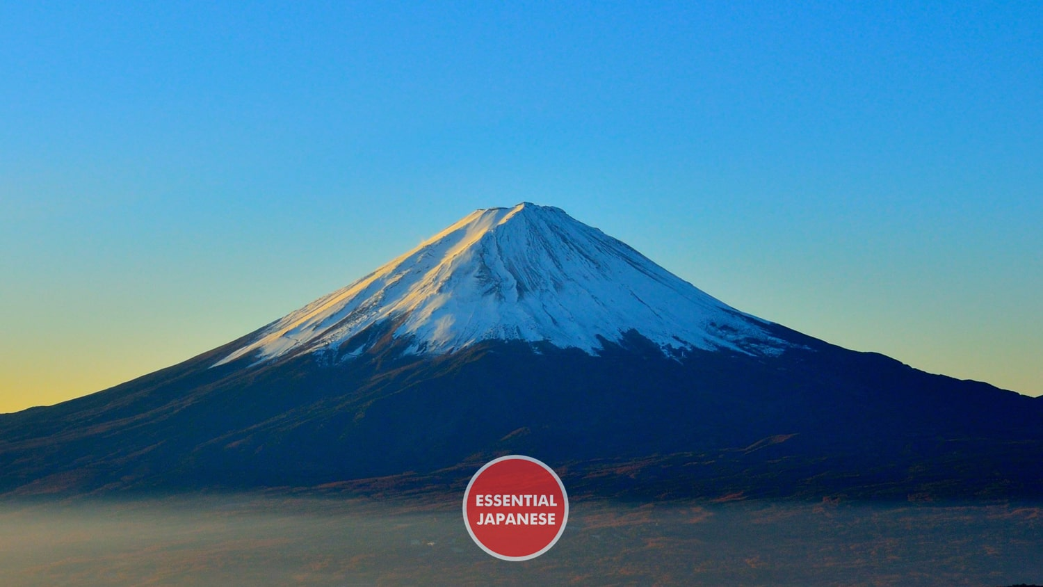Essential Japanese Travel Phrases - Udemy course cover